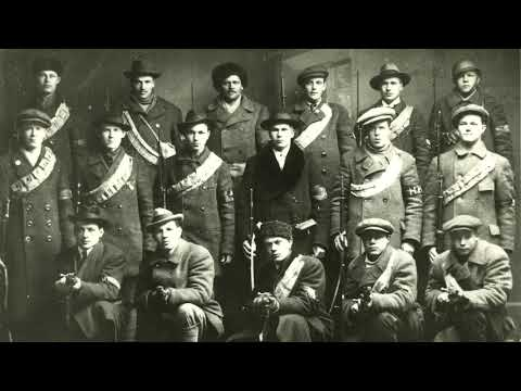 Finnish Communist Revolution (1918) PART 6: The Red Guard and Red Army