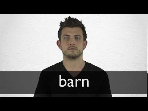 Barn definition and meaning | Collins English Dictionary