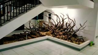 Driftwood Art Projects.  #hardscape #paludarium