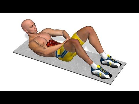 Quel muscle dans le corps de la personne le plus fort la réponse à lénigme