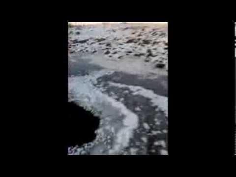 Strange Creature Filmed Under Frozen Pond in Lithuania