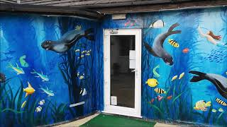 Underwater Seals mural