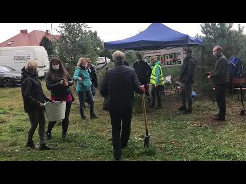 Wideo1: Akcja Zaadoptuj drzewo na ul. Siewnej w Lesznie