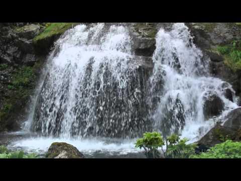 """Фото видеогид Заповедник """"Вишерский"""" Vishersky nature reserve"""