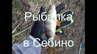 Платная рыбалка в николаевской области 2020