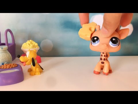 LPS:  One Take Challenge! 🎬 |  Lps Kitkat ♡