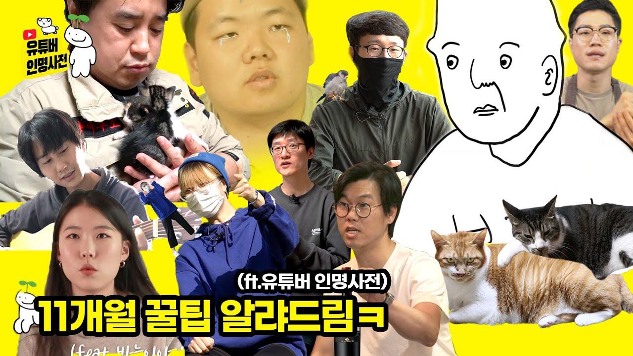 유튜브 약 1년 해보고 깨달은 꿀팁 공개(ft.유튜버 인명사전)