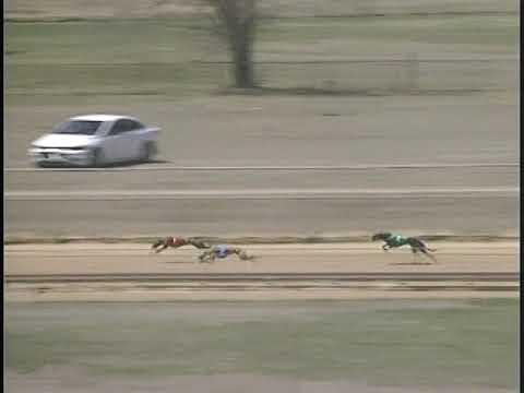 Race 24