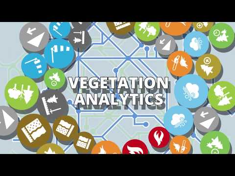 Vegetation Analytics