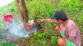 Đi Săn Chuột Mùa Nước Lũ Bằng Cách đốt Nhà Và Cái Kết Cười Té Ghế
