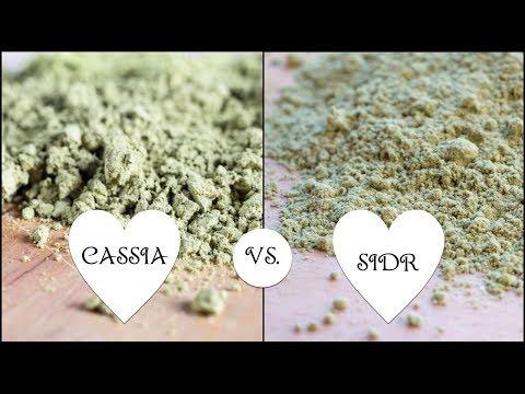 Cassia (henné neutro) o Sidr: Cosa usare nei mix tintori di henné? Beautilicious Delights
