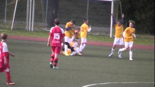 preview picture of video 'Liga WZPN 2013/14 Salos Poznań 0-1 Korona Zakrzewo'