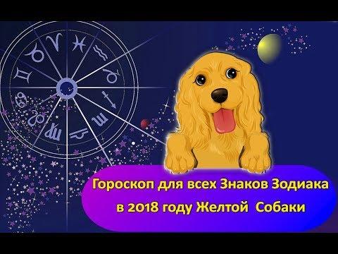 Гороскоп дева на 2018 год