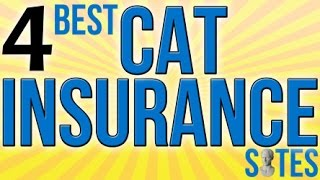 4 Best Cat Insurance Sites