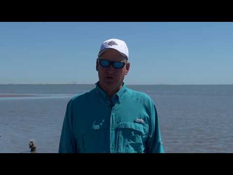 Texas Fishing Tips Fishing Report January 24 2019  Aransas Pass Area With Capt. Doug Stanford