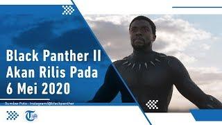 Black Panther II akan Rilis Mei 2020 Mendatang