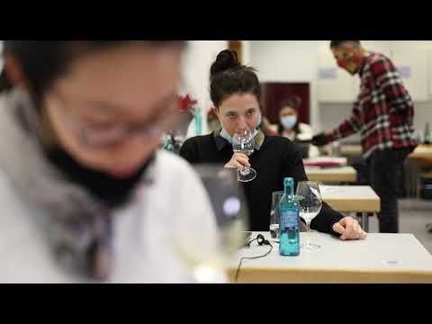 WOW in-class & online-Seminar: Future Challenges in the Wine Industry