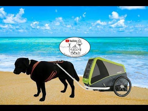 Camping und e-biken mit Hund - ein Hundeanhänger- Tip