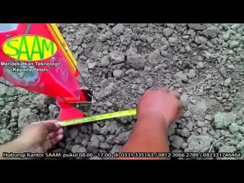 Video DEMO PENANAMAN  KEDELAI EDAMAME DI LAHAN MITRA TANI 27 ( HUB: 081230662789 / 082 3317 46464 )