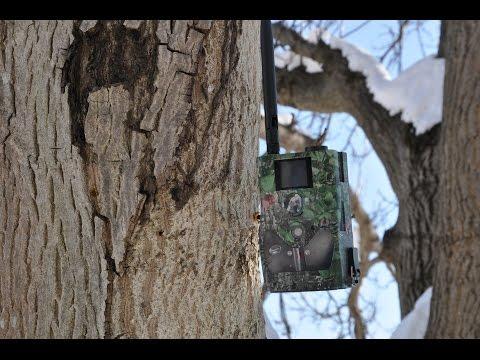 Ловна камера с MMS функция Scout Guard SG 880MK HD 18 Mpx