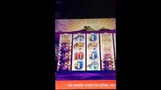 EPIC max bet $2481 hand pay Buffalo slot machine at Mohegan Sun in Connecticut $2 bet bonus round