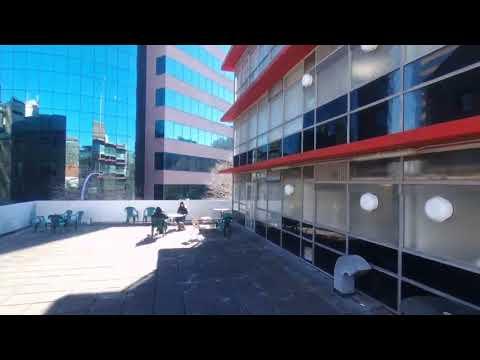 Access Language Centre- Where the sun shines brighter