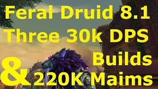 By Photo Congress    Wow Tbc 2 4 3 Druid Guide