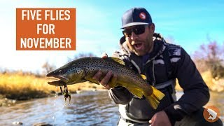 Trouts Fly Fishing: Five Flies for November