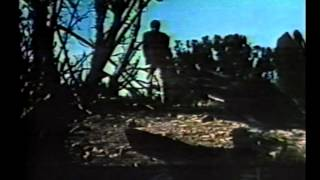 Nightmare In The Sun (1965) Full Movie