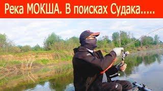 Все о рыбалке в пензенской области на мокше