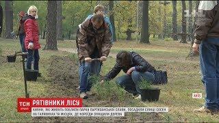 Кияни власноруч висадили дві тисячі саджанців сосни у Парку партизанської слави