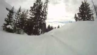 Bear Valley Snowmobile, CA - Spicer Trail Cruise