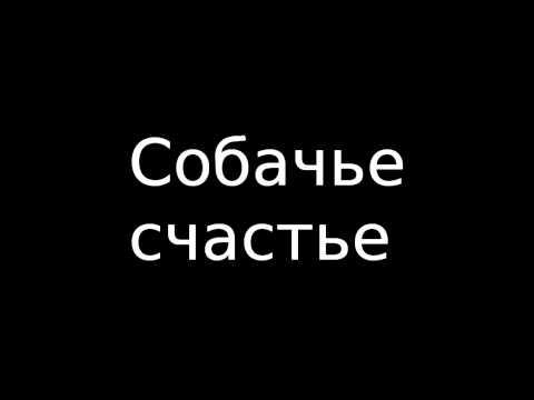 Я хочу пожелать вам счастья песня