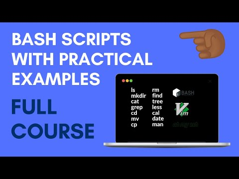 Bash Script with Practical Examples | Full Course