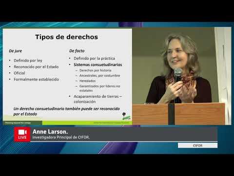 Video presentación: Elementos clave para entender los factores que afectan la seguridad  e inseguridad de la tenencia en contextos de tenencia colectiva por Anne M. Larson de CIFOR