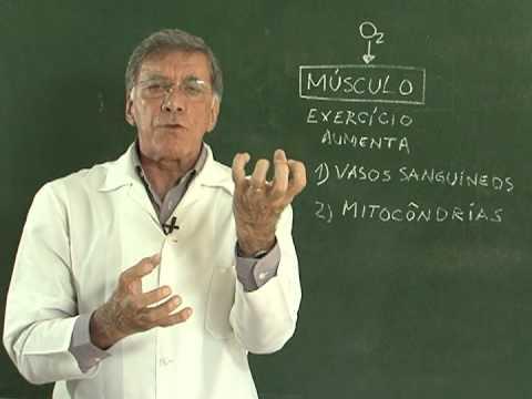 Princípios de diagnóstico de doença hipertensiva