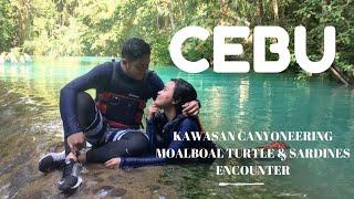 Moalboal Island Hopping, Cebu