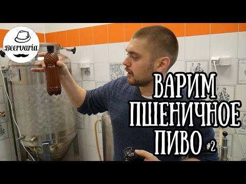 Le pillole di alcolismo di Elena Malysheva - La codificazione da alcolismo endovenosamente medicine