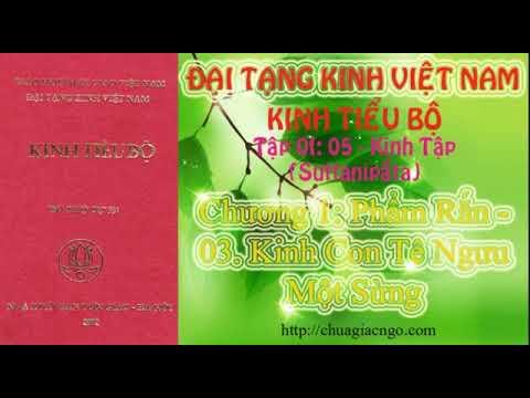 Kinh Tiểu Bộ - 060. Kinh Tập - Chương 1: Phẩm Rắn - 03. Kinh Con Tê Ngưu Một Sừng