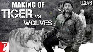 Tiger vs Wolves   Making of Tiger Zinda Hai   Salman Khan   Katrina Kaif   Ali Abbas Zafar