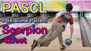 PASCL  PBA Animal Pattern Scorpion 42feet 【ボウリング】2018/12/07