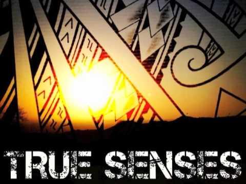 """TRUE SENSES """"Get It Right"""""""