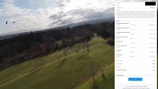Formation flying with the Geese DJI FPV Going Great Until