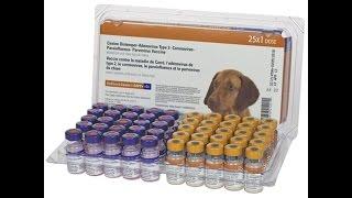 Nobivac Canine 1 DAPPv+Cv 5 Way + Corona 25 ds tray