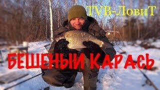 Ловля огромных Карасей Лещей и Карпов | Зимняя рыбалка на фидер 2018 | Глухозимье?
