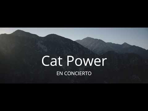 Spot Cat Power Wanderer