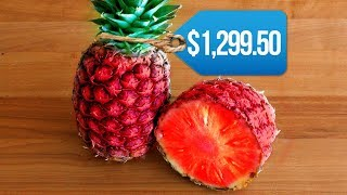 Most EXPENSIVE Fruits In The World!