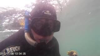 Как ловить спизулу в японском море
