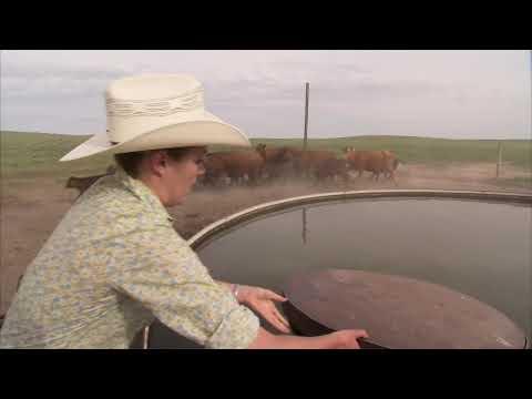 Young Female Colorado Rancher - America's Heartland