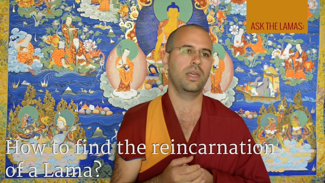 How to find the reincarnation of a lama?